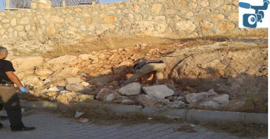Şanlıurfa'da toprağa gömülü kalaşnikof silahlar bulundu