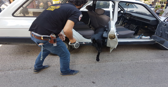 Şanlıurfa Polisinden Başarılı Operasyon!