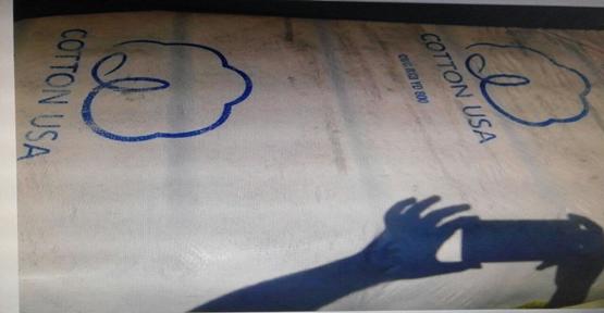 Urfa'da Sahte Plaka Ve Belgelerle Dolandırıcılık