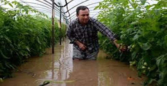 Bakan Çiftçi, Çiftçilerimizin Borçları Ertelenecektir