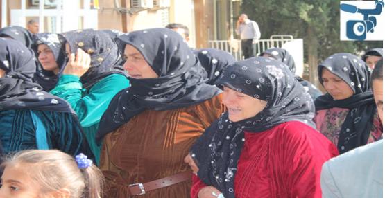 Urfa'da yine pamuk faciası