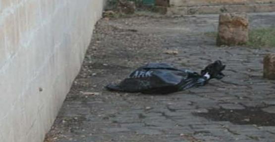 Şanlıurfa'da İnsana Ait Kesik Bacak Bulundu