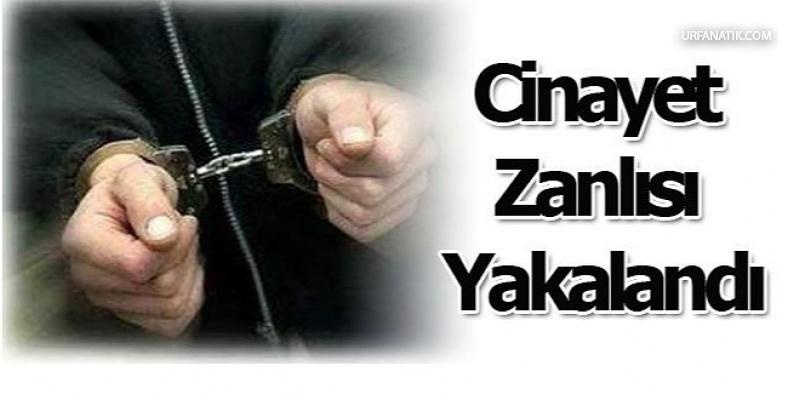 Urfalı cinayet zanlısı Edirne'de yakalandı