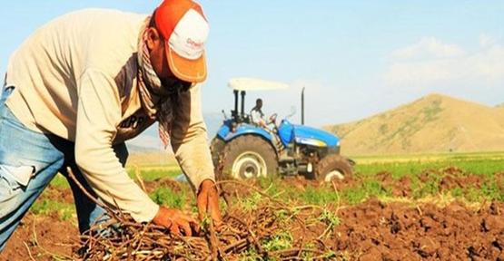 Çiftçi, Gübre Ve Mazot Desteklemeleri Ödenmeye Başlandı