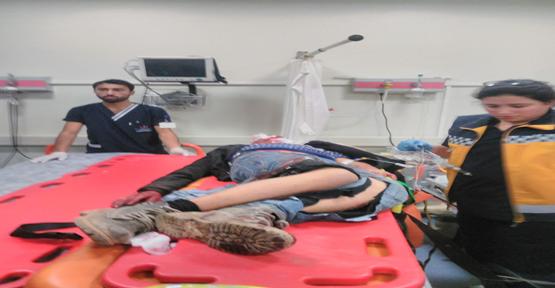Urfa'da iki otomobil kafa kafaya çarpıştı, 7 yaralı
