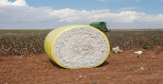 Tarım İşçilerin Yerini Makineler Aldı