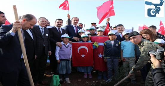 Cumhurbaşkanı Erdoğan, Telekonferans İle Şanlıurfa'da Fidan Dikimin Katıldı