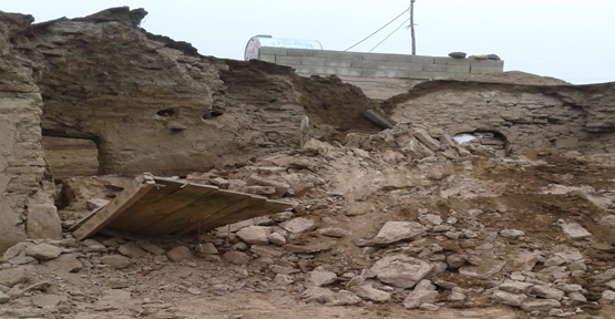 Urfa'da Aşırı Yağıştan Çöken Ahırda 3 Hayvan Telef Oldu