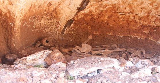 Bozova'da Roma Dönemine Ait Kaya Mezarı Bulundu