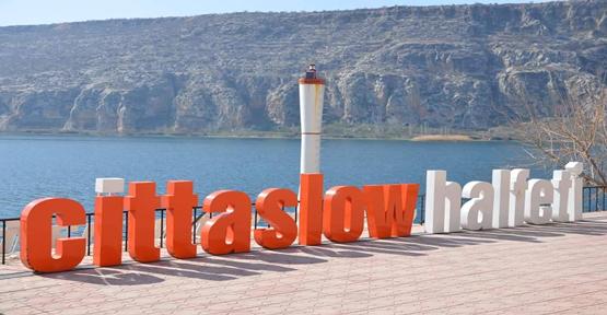 Güneydoğu Anadolu'nun Bodrumu Sessizliğe Büründü
