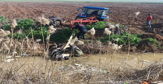 Şanlıurfa'da Tahliye Kanalına Düşen İnek Kurtarıldı