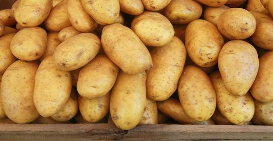 Patates İthalatında Önemli Gelişme