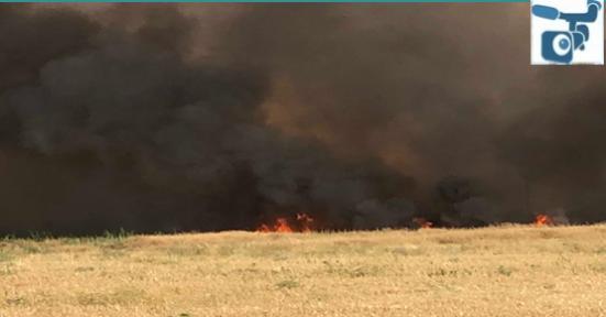 Suriye Sınırındaki Anız Yangını Tehlike Saçıyor