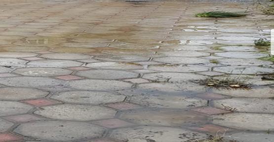 Urfa'da Drenaj Çalışmaları Yapılmıyor Mu!