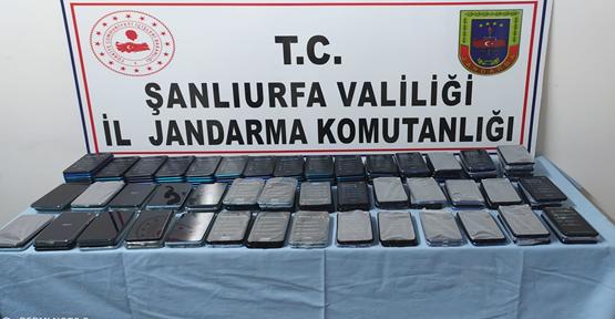 Şanlıurfa Jandarmadan operasyon, 2 tutuklama