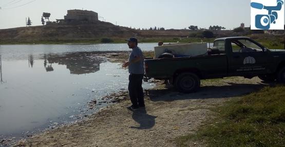 Telabyad'da Göletler Balıklandırıldı