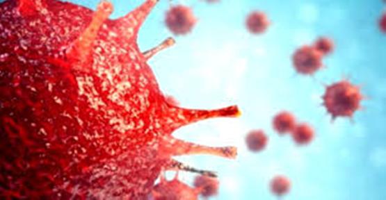 23 Ekim koronavirüs tablosu!