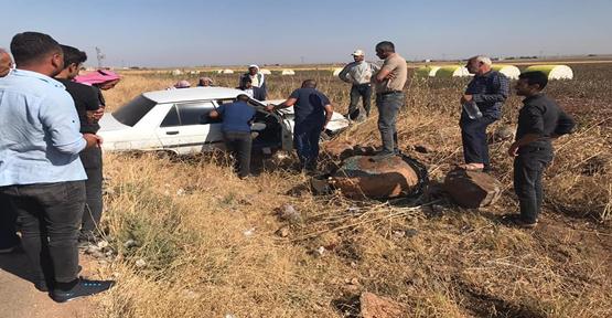 Urfa'da Otomobil Pamuk Tarlasına Girdi