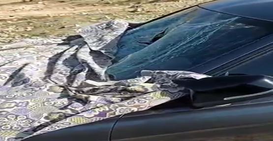 Karaköprü'de yayaya çarpıp kaçan sürücü yakalandı