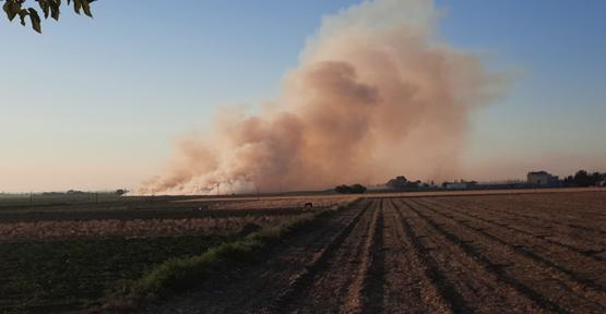 Urfa'da korkutan anız yangınları