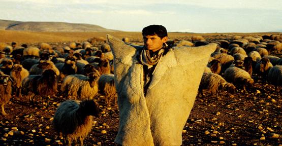 """""""Çobanların Yaşam Koşulları Zor"""""""