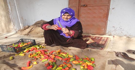 Harran'da Depolanan  İsot İç Piyasada