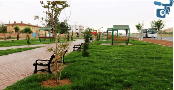 Parkın açılışı yapılıyor
