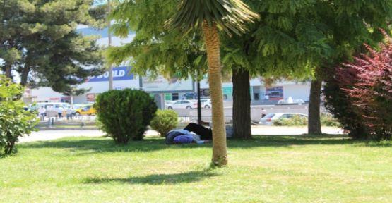 Parklarda Dinlenen Vatandaşlar Uyuyakalıyor