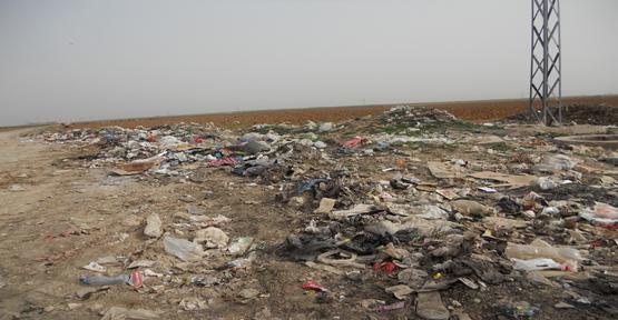 Şanlıurfa,da Çöpler Hastalık Saçıyor