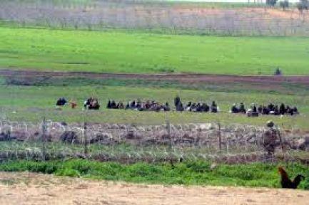 Sınırda Çatışmalar Alevlendi