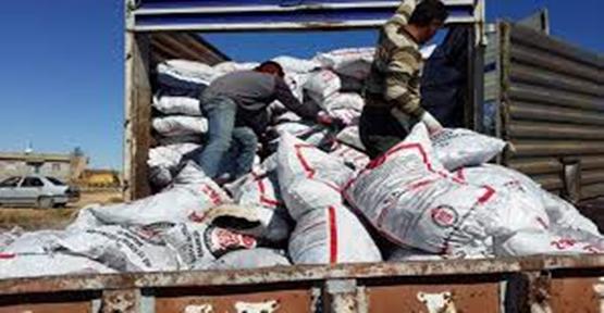 Suriyelilere kömür dağıtımı