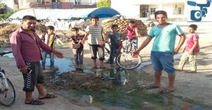 Urfa'da Logardan Çıkan Pis Su Hastalık Saçıyor