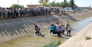 Urfa'da Bir Ayda 9 Kişi Hayatını Kaybetti