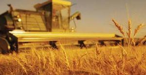 Ziraatten Tarımsal Kredi Borçlarına...