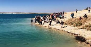 Urfa'da Parçalanmış Ceset Bulundu