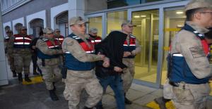 Şanlıurfa'da hayvan hırsızlığı, 4 kişi tutuklandı
