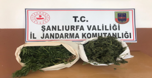 Şanlıurfa'da operasyon, 5 gözaltı
