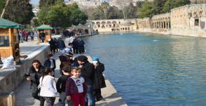 Urfa'da yasak kalktı Balıklıgöl'de...