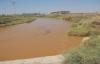 Harran'da çiftçilerin bilinçsiz sulaması
