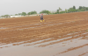 Urfa'da çiftçi kalmadı