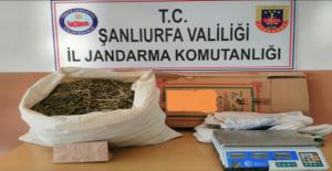 Suruç'ta uyuşturucu operasyonu: 2 gözaltı