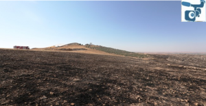 Göbeklitepe Çevresindeki Yangın Büyümeden Kontrol Altına Alındı