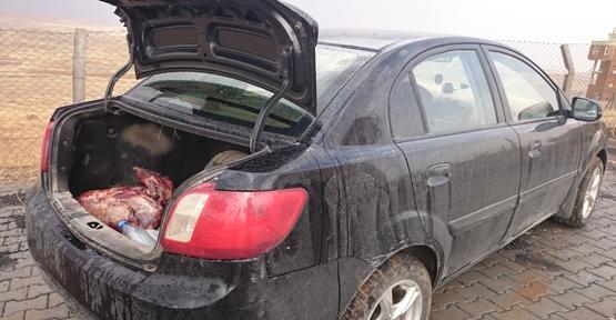 Urfa'da Ceylan Avlayan Kişilere Ceza Yağdı