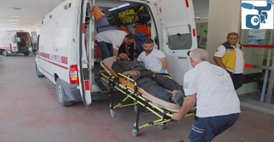 Urfa'da fıstık kavgası, 6 yaralı