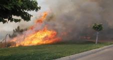 Akabe'de Orman Yangını