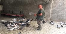 Sınırdaki Saldırılarda Kuşlarda Etkilendi
