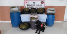 Şanlıurfa'da Emniyet Ve Jandarmadan Operasyon, 11 Gözaltı