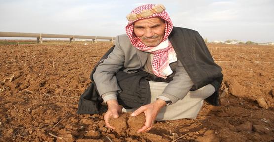 Kuraklık Şanlıurfa çiftçisini etkiledi