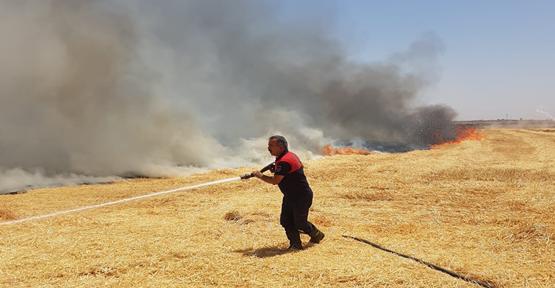 Urfa'nın iki ilçesinde yangın