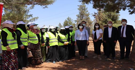 Urfa'da Tarımsal beceri geliştirme programı gerçekleşti
